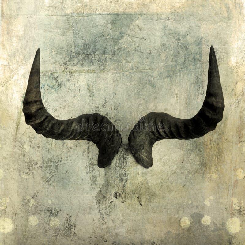 Wildebeest рожочков Стоковое фото RF