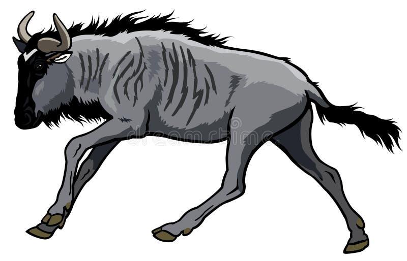 Wildebeest azul ilustração royalty free