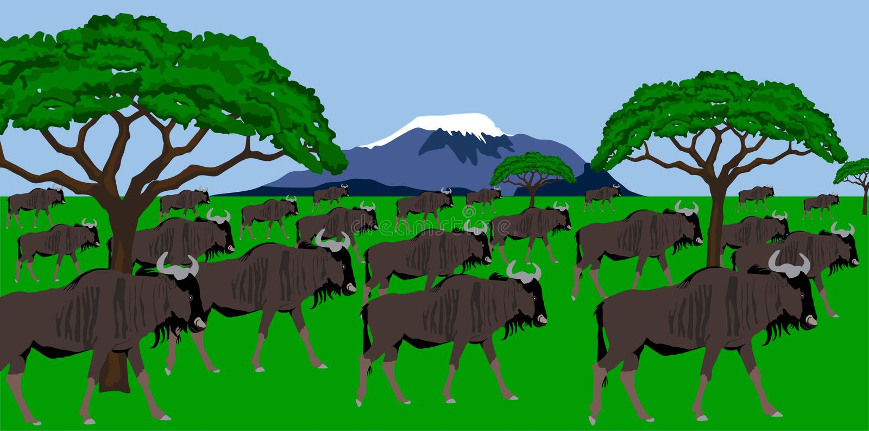 Wildebeest herd in african scenery