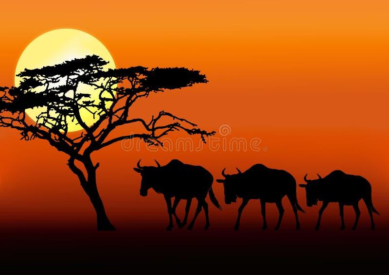 Wildebeests dans le coucher du soleil illustration de vecteur