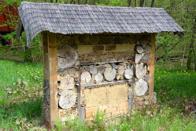 Wilder Bieneninsektenschutz an einer Wiese stockfoto