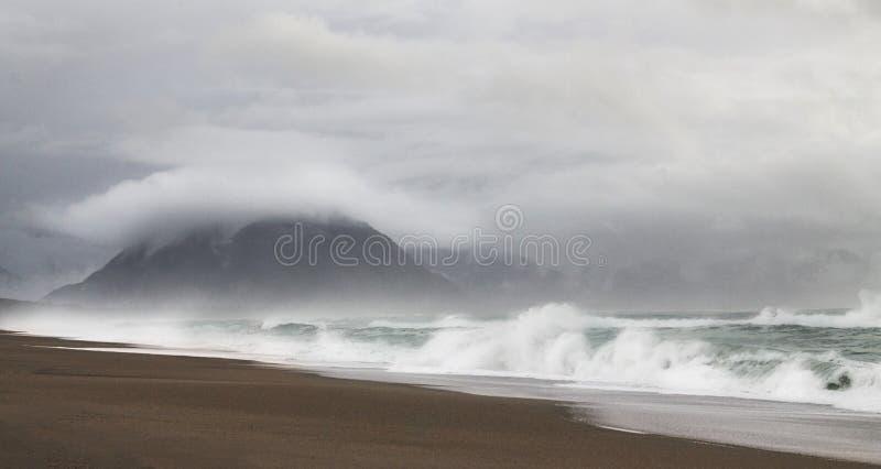 Wilder einsamer Strand stockbilder
