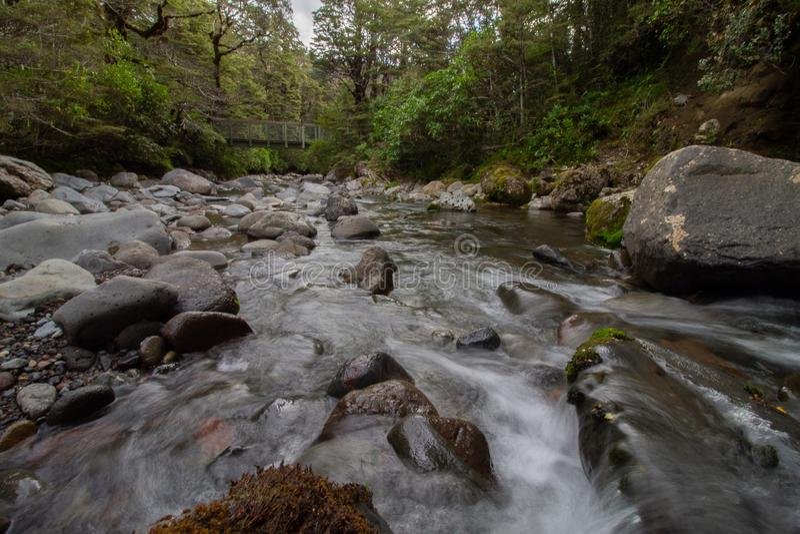 Wilder Fluss fließt unter eine Brücke in Tongariro Forrest Park New-Zealand stockfotografie