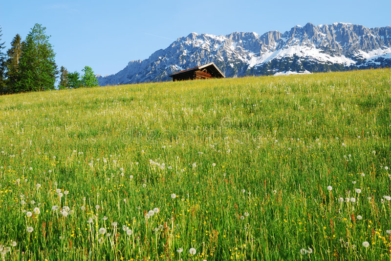 Wilder Kaiser. Mountains in the alps of Austria stock images