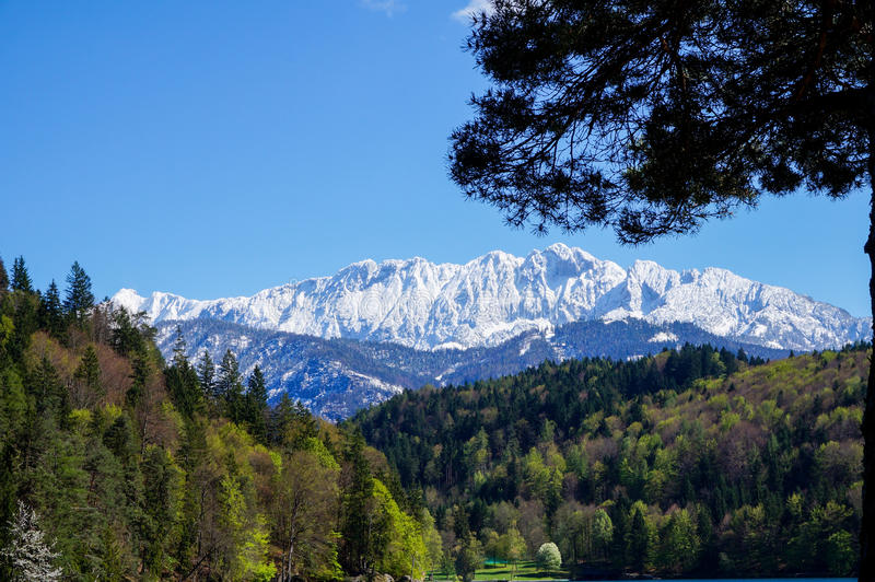 The Wilder Kaiser Alps. Viewed from a distance royalty free stock photos