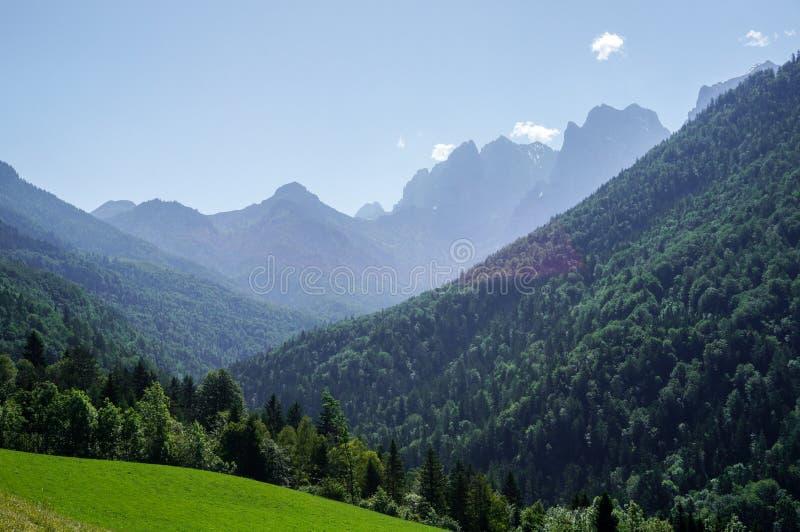 Wilder Kaiser peaks. A view of the Wilder Kaiser alps from the Kaisertal royalty free stock image