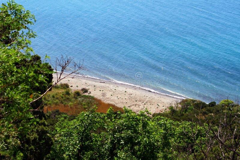 Wilder leerer Sandstrand auf Ufer Schwarzen Meers in Krim an einem schönen Sommertag lizenzfreies stockbild