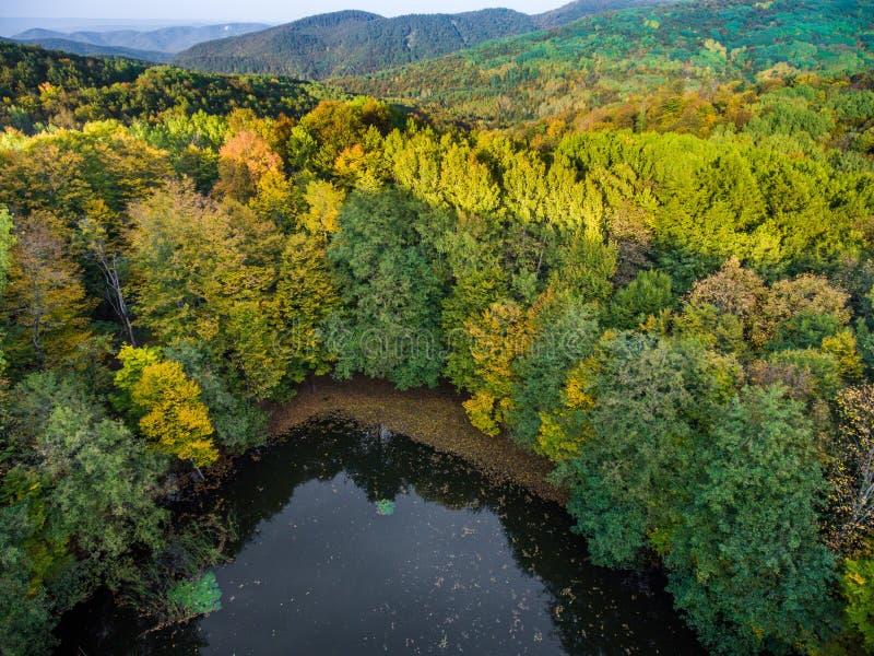 Wilder See im Herbstwald im Schatten des Berges stockfoto