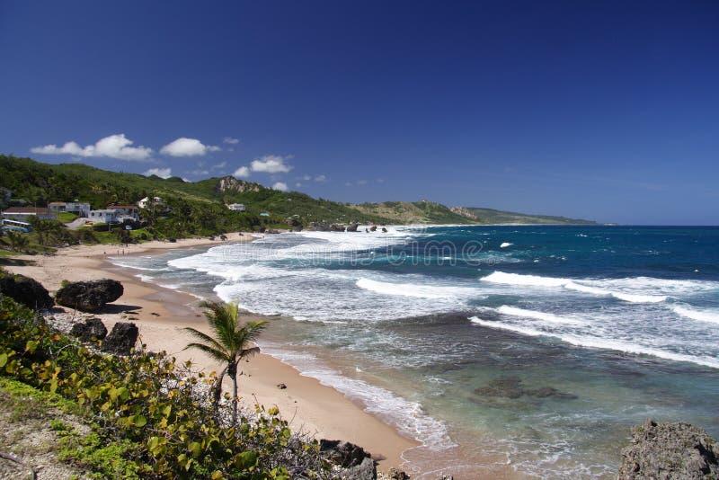 Wilder tropischer Strand lizenzfreie stockfotografie