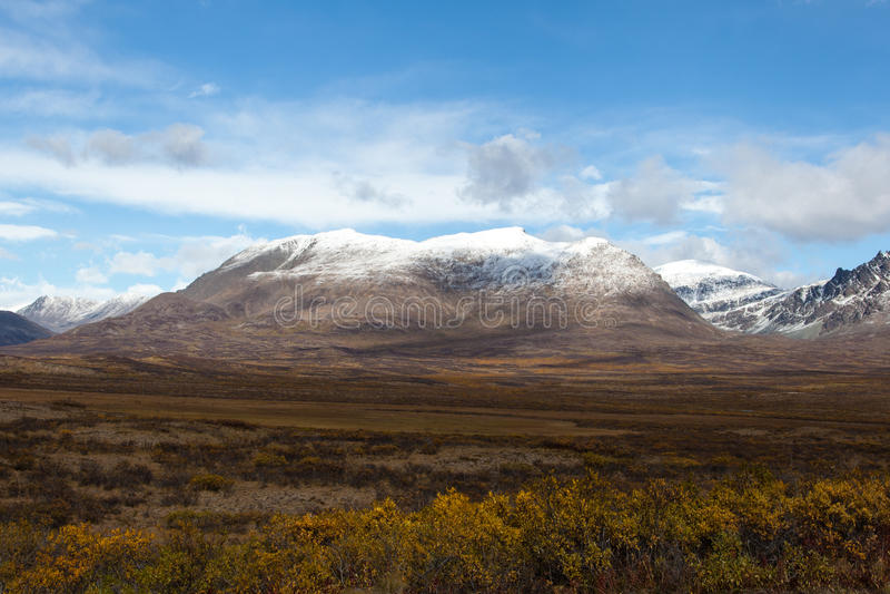 Tundra in Fall stock photography
