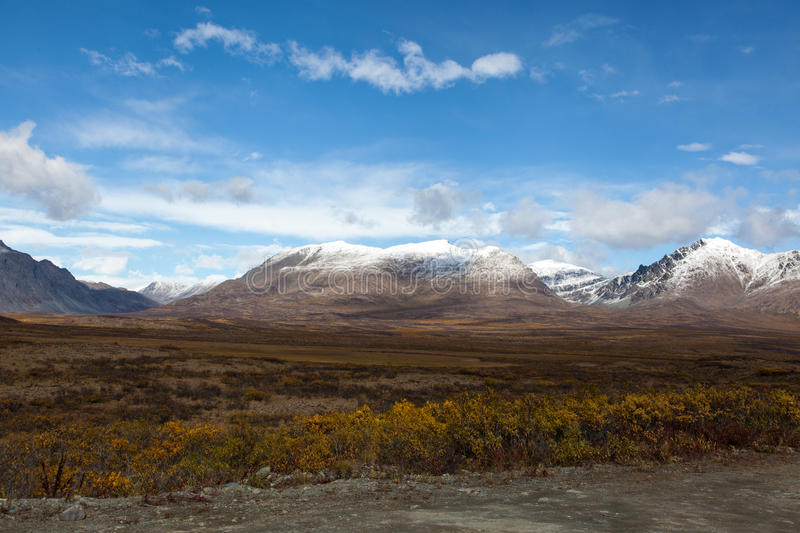 Tundra in Fall stock images