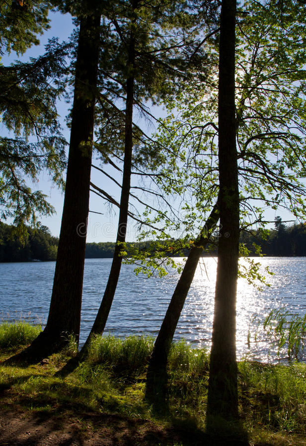 Wilderness See im Sonnenschein stockfotos