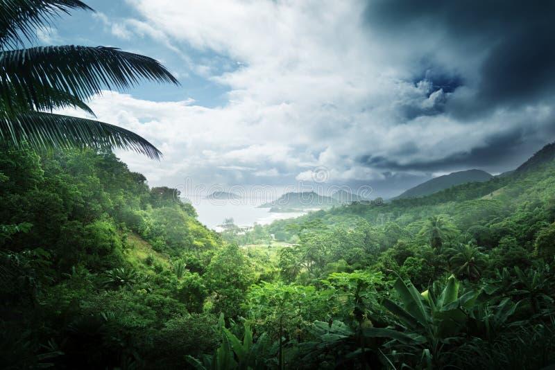 Wildernis van het eiland van Seychellen stock afbeelding