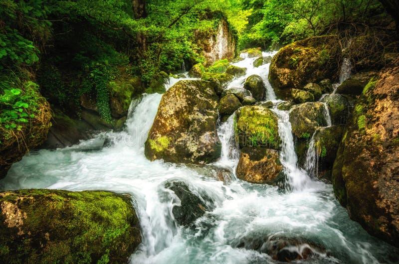 Wildernislandschap met stromend turkoois water van Georgische cascadewaterval bij donkergroene bosberg van Georgië royalty-vrije stock fotografie