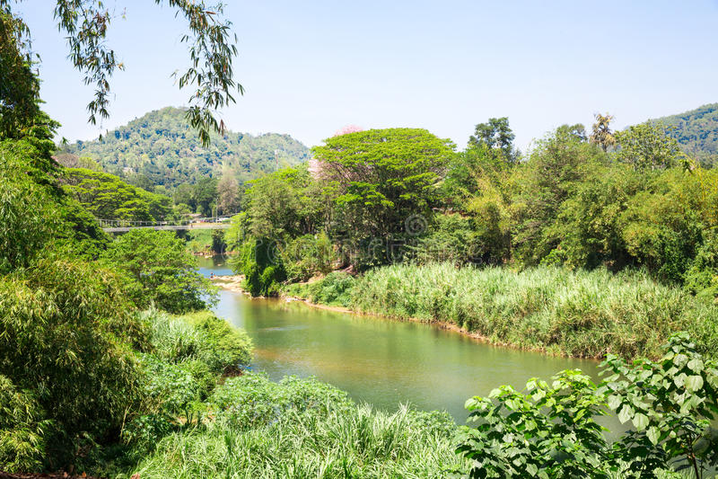 Wildernisrivier en tropisch kreupelhout op Sri Lanka royalty-vrije stock foto