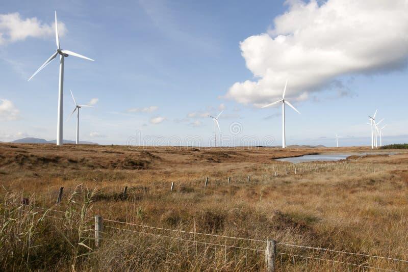Wildes langes Gras und bogland mit Windkraftanlagen stockfotografie