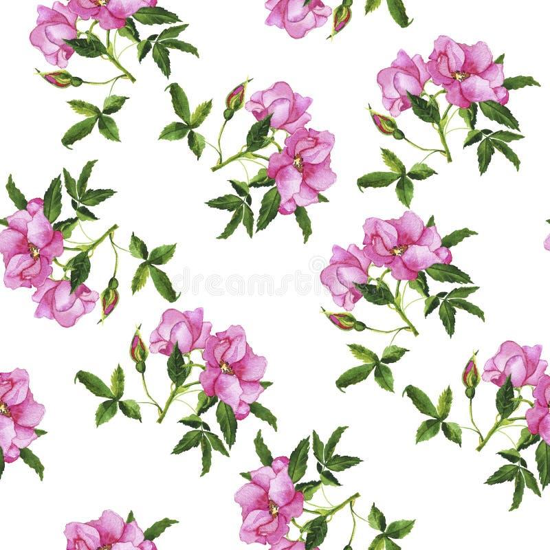 Wildes rosafarbenes Blumenstraußmuster Hand gezeichnetes Aquarell stockbilder
