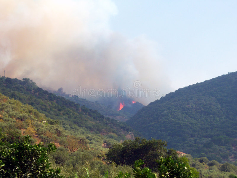 Wildfire stock images