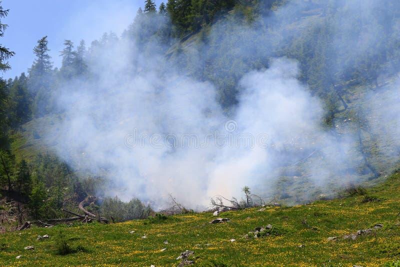 Download Wildfire fotografia stock. Immagine di pompiere, wildfire - 55356224