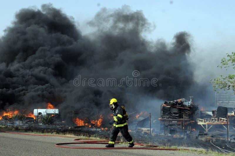 wildfire fotografia de stock