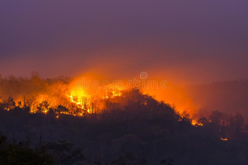 Wildfire in Ubon Ratchathani, Thailand. Wildfire at Night in Ubon Ratchathani, Thailand royalty free stock photo