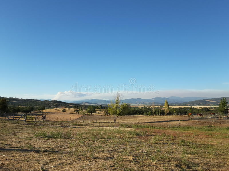 Wildfires can kill stock photos