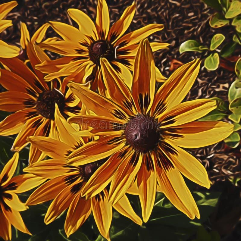 wildflower fotografie stock
