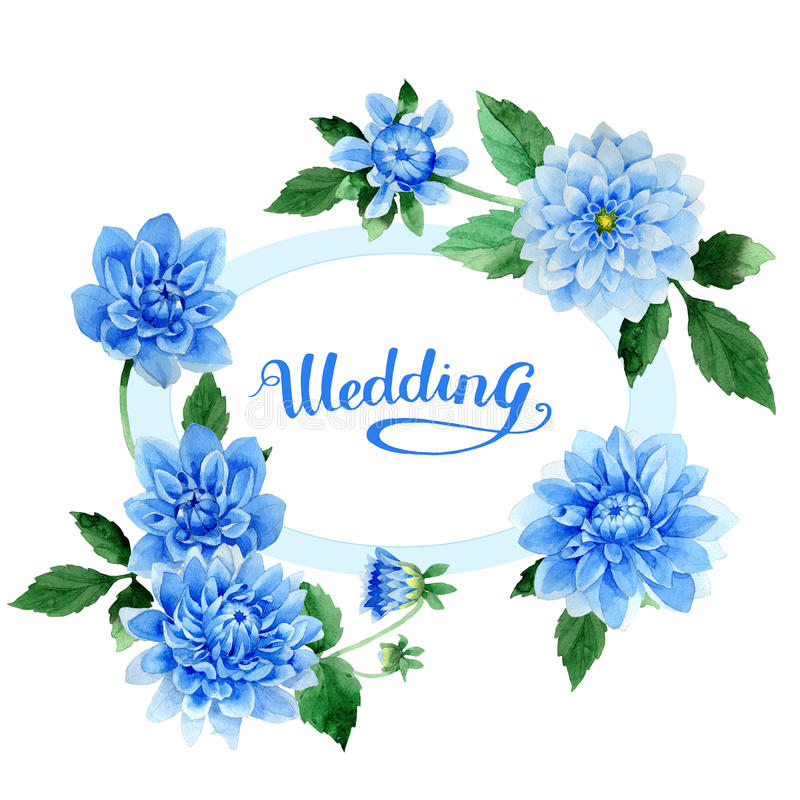 Wildflower blue dahila flower frame in a watercolor style isolated. vector illustration