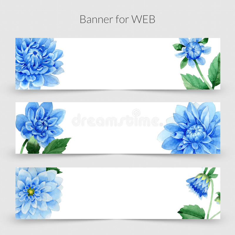 Wildflower Blue dahlia promo sale banner template in a watercolor style isolated. stock illustration