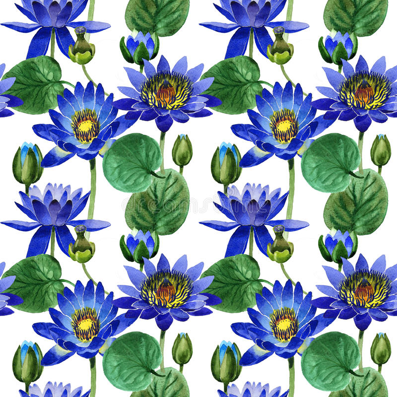 Wildflower blue lotus flower pattern in a watercolor style isolated. vector illustration