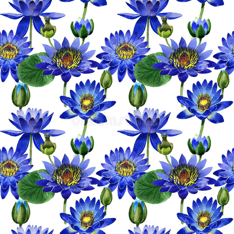 Wildflower blue lotus flower pattern in a watercolor style isolated. stock illustration