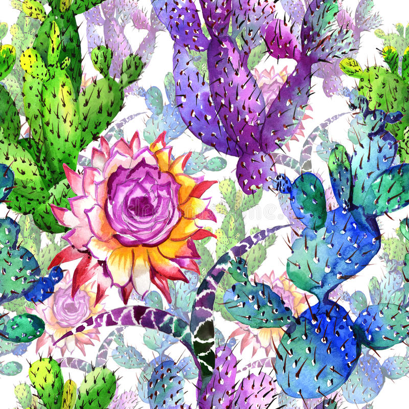 Wildflower cactus flower pattern in a watercolor style. Full name of the plant: cactus. Aquarelle wild flower for background, texture, wrapper pattern, frame stock illustration