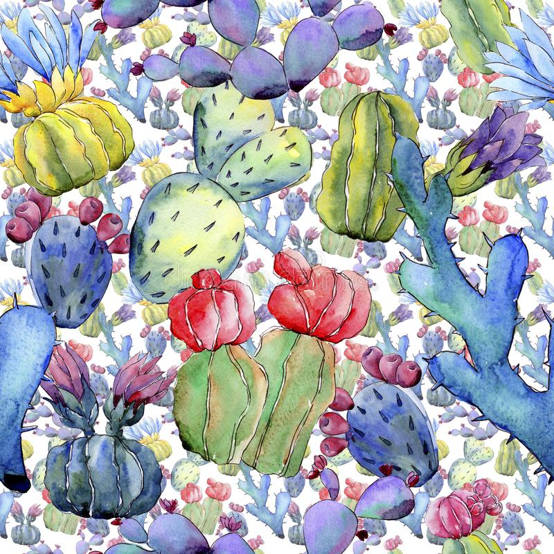 Wildflower cactus flower pattern in a watercolor style. Full name of the plant: cactus. Aquarelle wild flower for background, texture, wrapper pattern, frame royalty free illustration