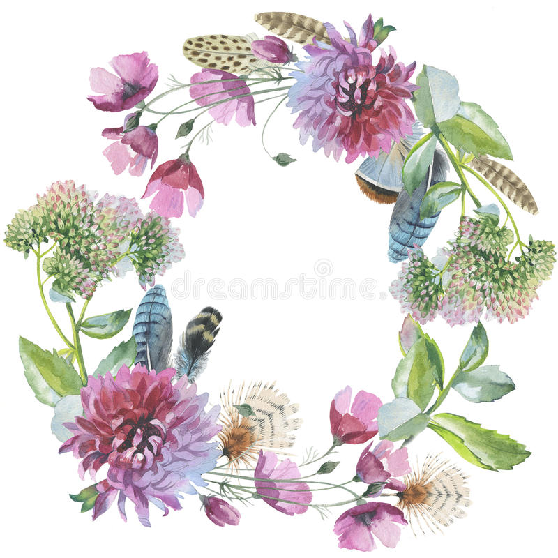 Wildflower chrysanthemum flower wreath in a watercolor style iso. Lated. Aquarelle wild flower could be used for background, texture, wrapper pattern, frame or stock illustration
