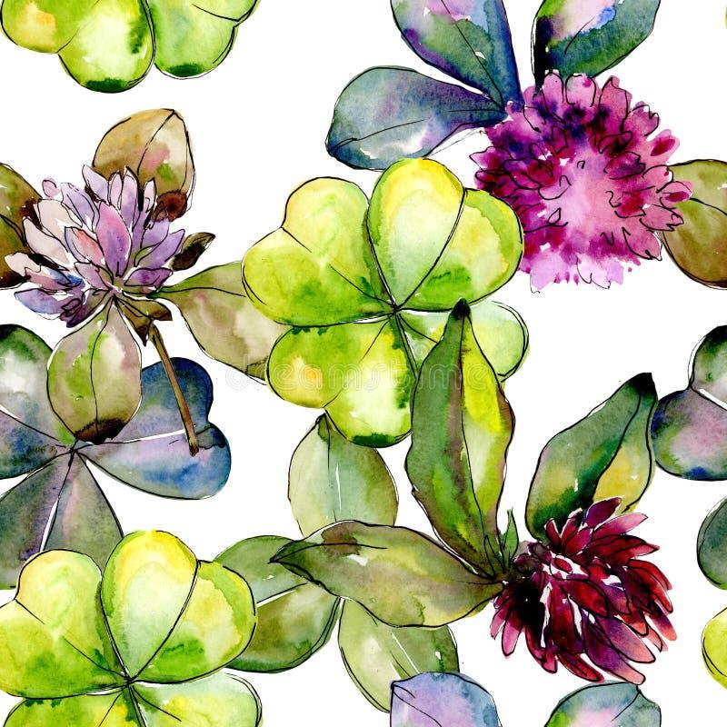 Wildflower clover. Floral botanical flower. Wild spring leaf wildflower pattern. vector illustration