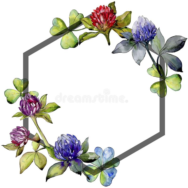 Wildflower clover flower in a watercolor style frame. vector illustration