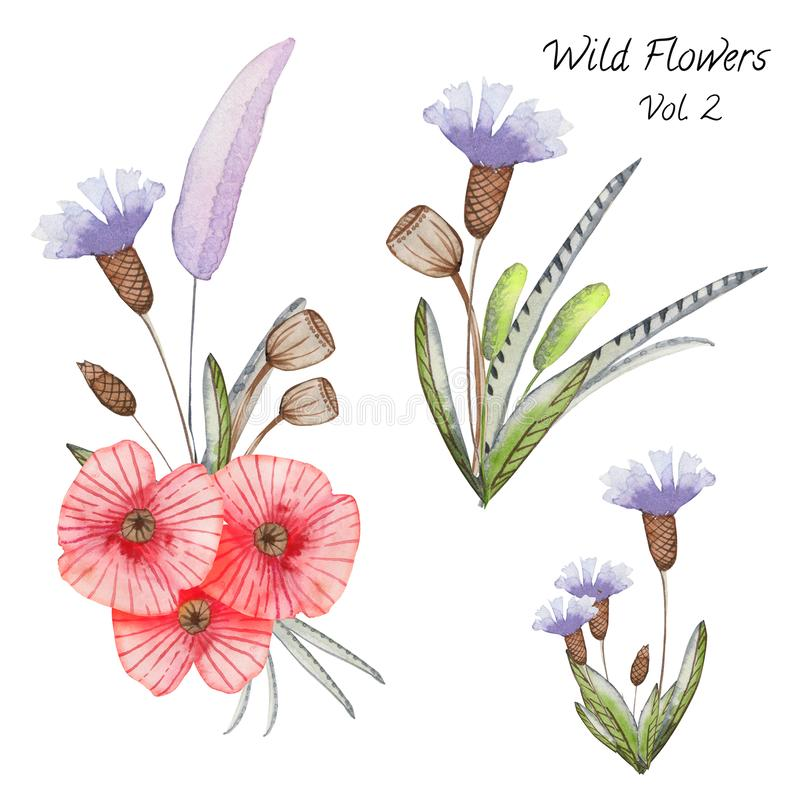 Set of watercolor flower compositions on a white background. Wildflower compositions are ready to use for design projects, cards, print vector illustration