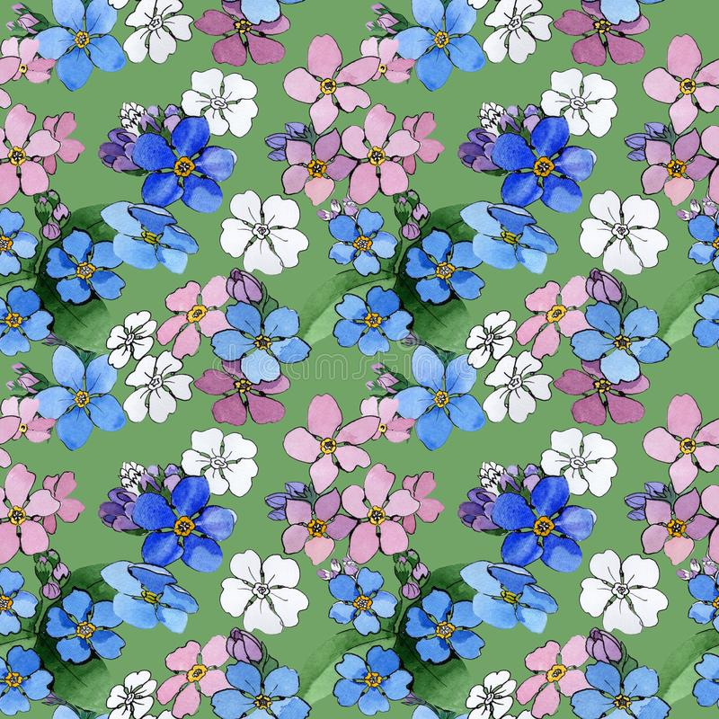 Wildflower forget-me-not flower pattern in a watercolor style. Full name of the plant: forget-me-not. Aquarelle wild flower for background, texture, wrapper royalty free illustration