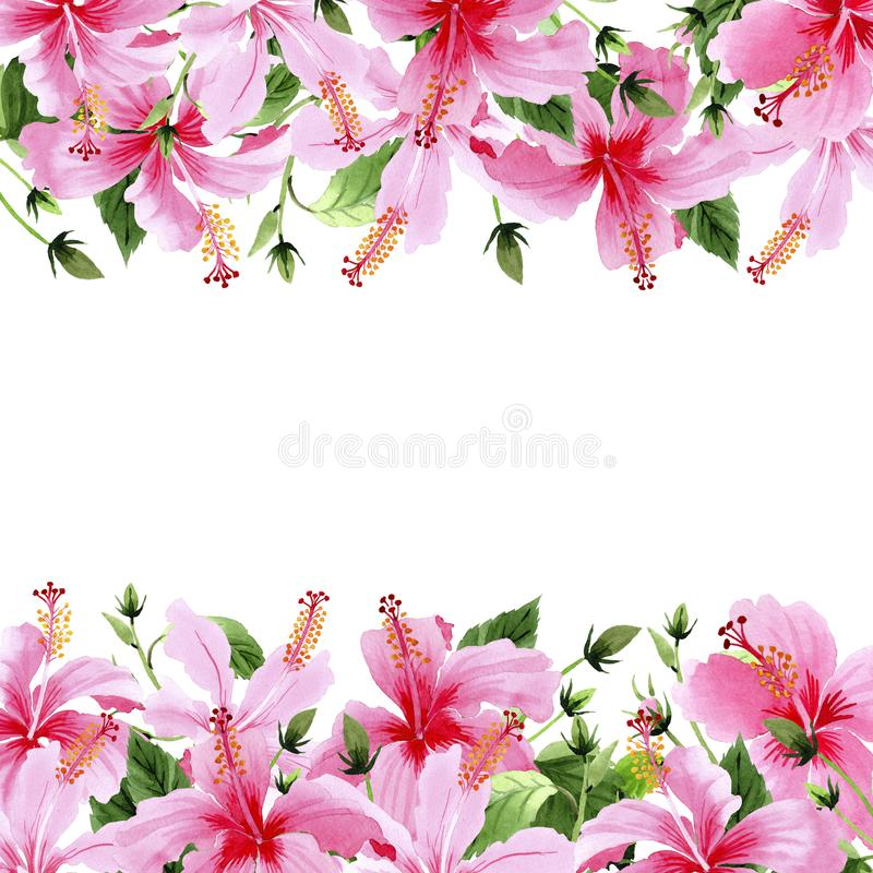 Wildflower hibiscus pink flower frame in a watercolor style. Full name of the plant: hibiscus. Aquarelle wild flower for background, texture, wrapper pattern royalty free illustration