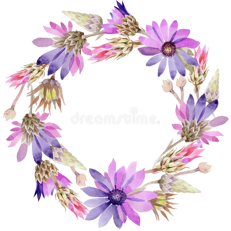 Wildflower immortelle flowerwreath in a watercolor style. Wildflower immortelle flower wreath in a watercolor style. Full name of the plant: Immortelle royalty free illustration