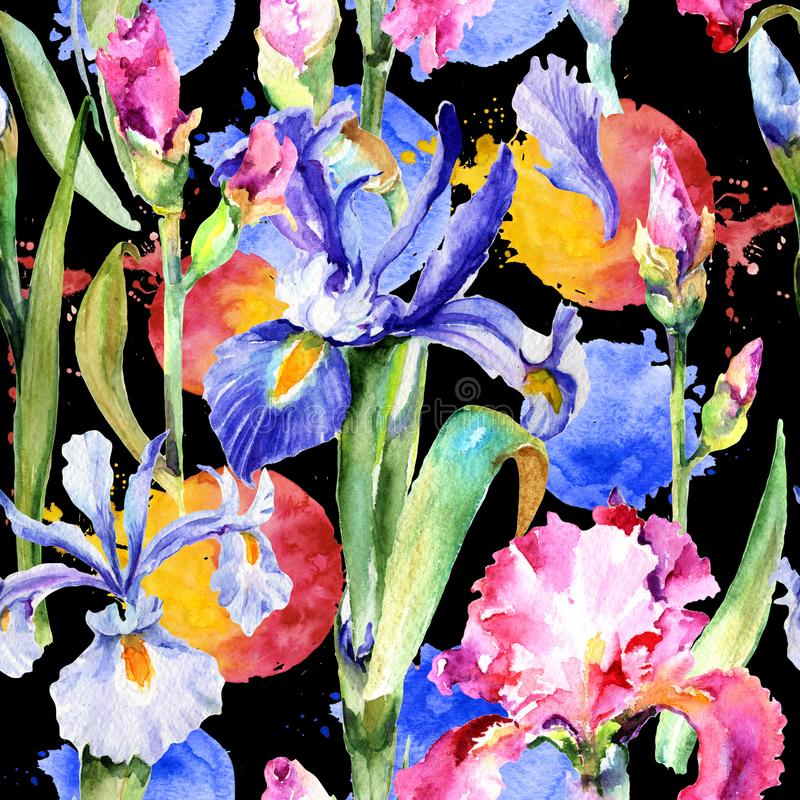 Wildflower iris flower pattern in a watercolor style. royalty free illustration