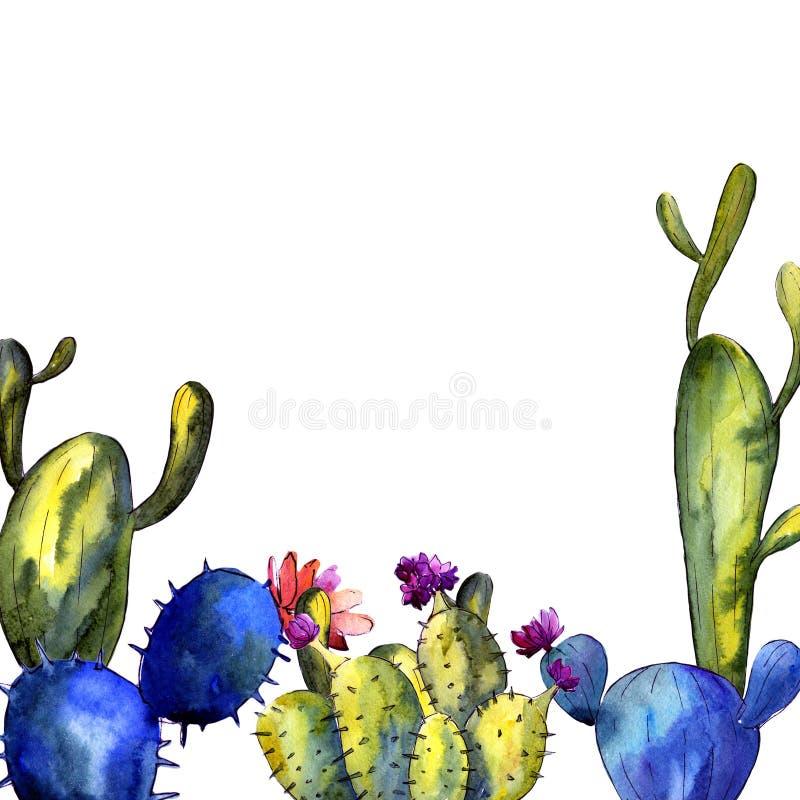 Download Wildflower Kaktusa Rama W Akwarela Stylu Ilustracji - Ilustracja złożonej z ornamental, kąt: 106918582