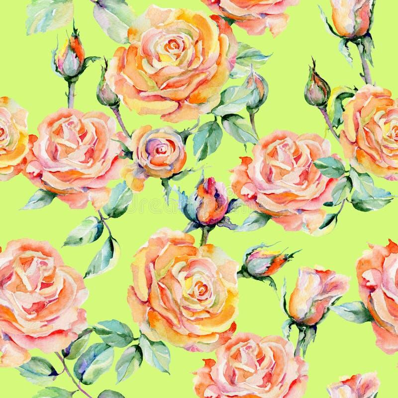 Wildflower kwiatu różany wzór w akwarela stylu ilustracji