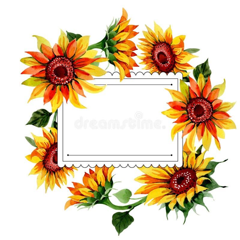 Download Wildflower Kwiatu Słonecznikowa Rama W Akwarela Stylu Ilustracji - Ilustracja złożonej z odosobniony, sztandar: 106920531