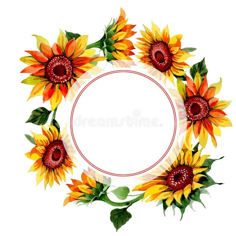Download Wildflower Kwiatu Słonecznikowa Rama W Akwarela Stylu Ilustracji - Ilustracja złożonej z ornament, dekoracyjny: 106920874