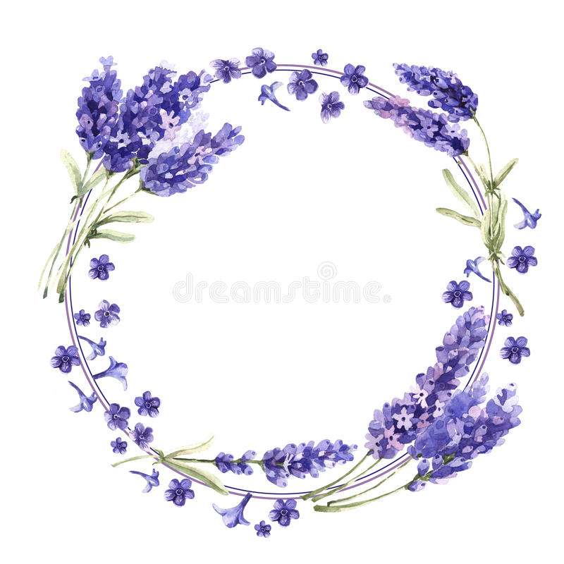 Wildflower lavender flower wreath in a watercolor style isolated. vector illustration
