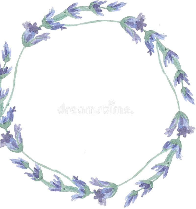 Wildflower lavender flower wreath in a watercolor style isolated. Full name of the plant: lavender. Aquarelle wild stock illustration