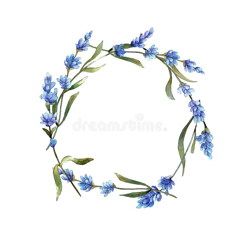 Wildflower lavender flower wreath in a watercolor style. Full name of the plant: lavender. Aquarelle wild flower for background, texture, wrapper pattern vector illustration
