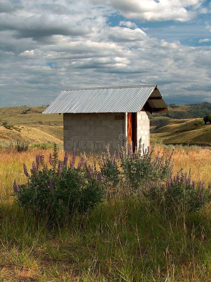 wildflower outhouse стоковые изображения rf
