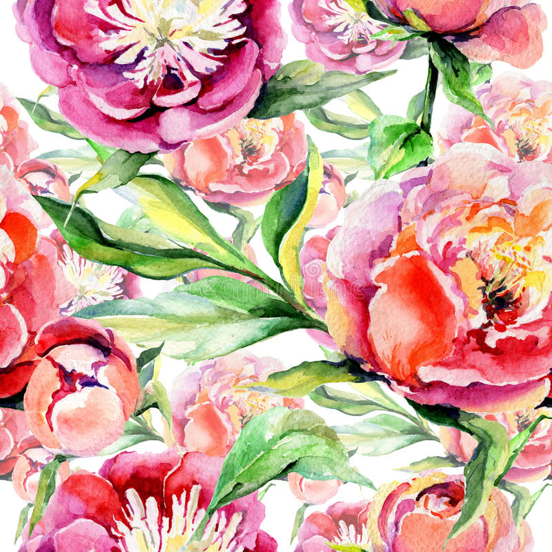 Wildflower peony flower pattern in a watercolor style. stock illustration